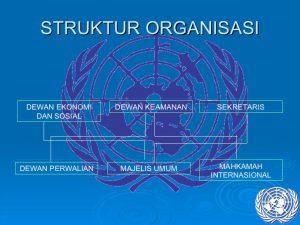Struktur Organisasi PBB