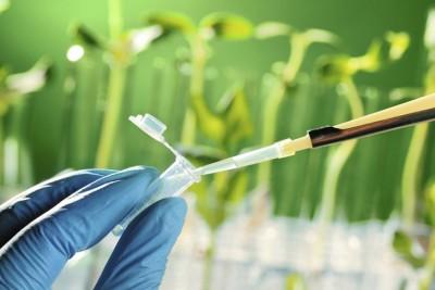 Sebutkan Pengertian Jenis Bioteknologi