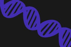 Persamaan Perbedaan mRNA tRNA