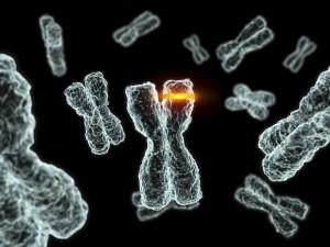 Mutasi Genetik