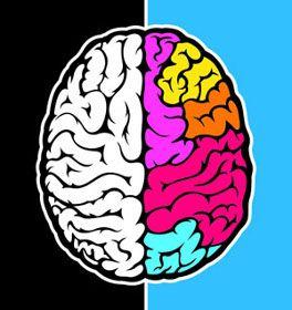 Fungsi Otak Bagian Kanan