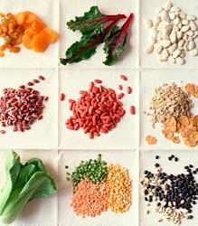 Fakta Tentang Protein