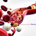 Pengertian Trombosit