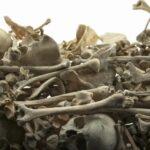 Renovasi tulang