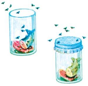 Perbedaan antara Abiogenesis dan Biogenesis
